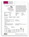 "8"" Commercial Downlights"